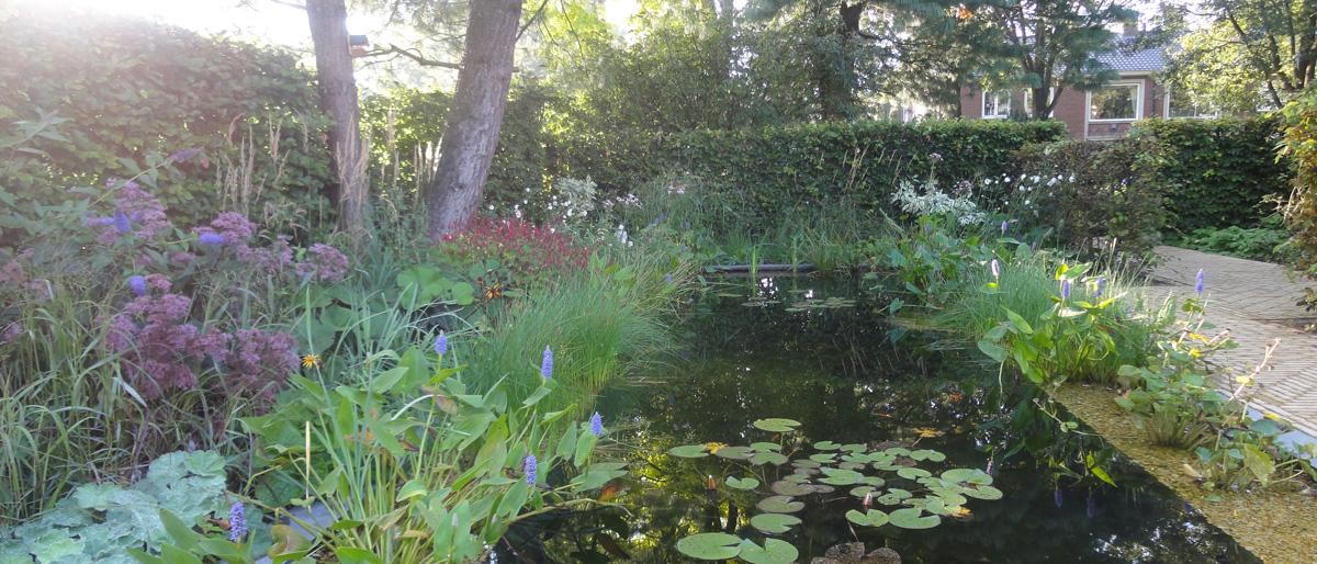 Permalink to:Water in de tuin geeft een extra dimensie